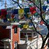 Nepal, Punauti, Dhulikhel, Namo Buddha, Thrangu Tashi Yangtse Monastery